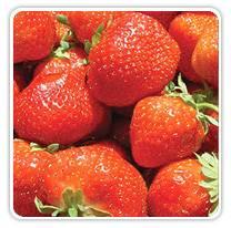strawberry-record